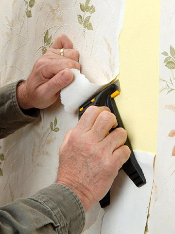 Renovating garden home party page 3 for Home wallpaper removal solution